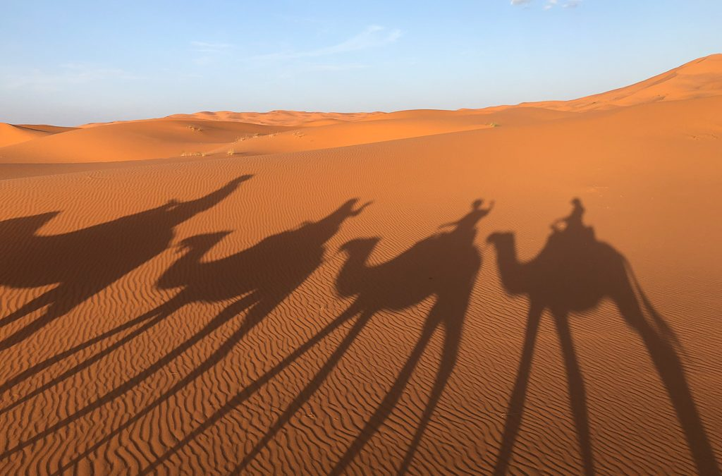 HOT Sun, sand and…..camels!