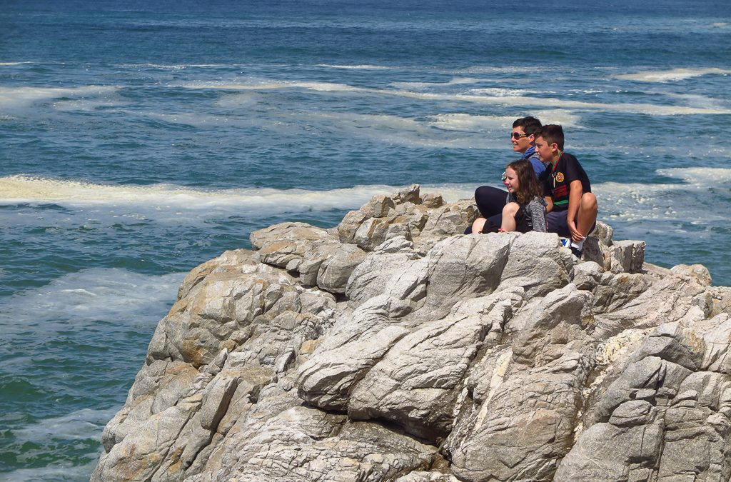 Hanging with the Huge Mammals in Hermanus (by Rich)